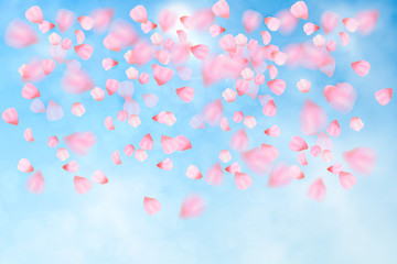 Pink cherry blossom with falling leaves. Isolated on white background. Spring composition with sakura. Vector illustration