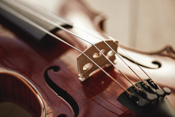 Close up view of strings of beautiful brown violin lying on wooden background. Musical instruments.
