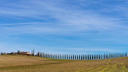 Beautiful Tuscan landscape around Bagno Vignoni with a long row of cypress trees, Siena, Italy
