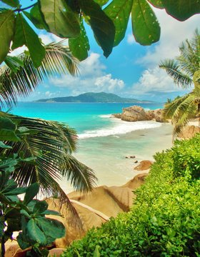 View of turquoise ocean with tropical beach, green vegetation and rocks near the shore. Through green leaves or foliage is an unsharp island visible in the distance. Summer holidays on the Seychelles