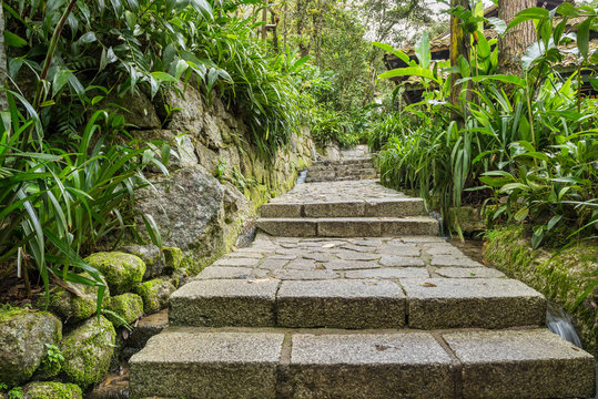 Stone staireway in jungle resort