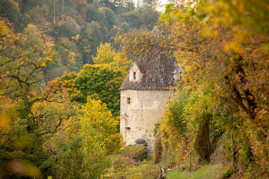 tower in autumn