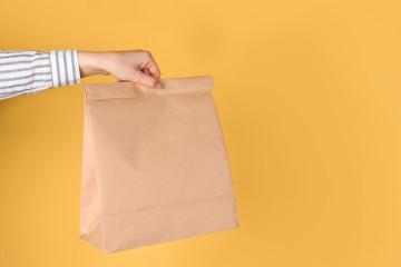 Woman holding paper bag on color background. Mockup for design