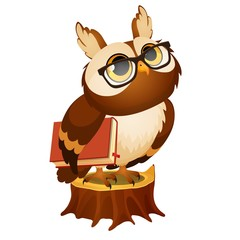 Wise owl with a book stands on a stump isolated on white background. Vector cartoon close-up illustration.