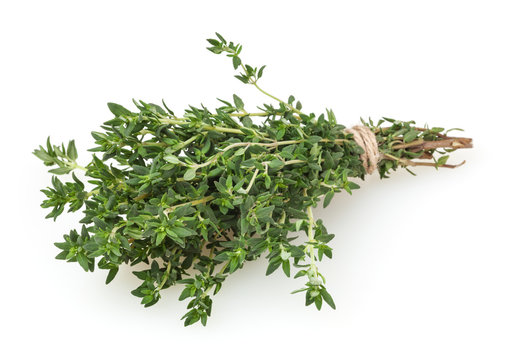 Fresh thyme bunch isolated on white background