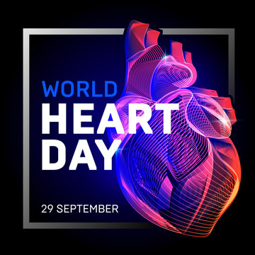 Vector human body heart with abstract 3d geometry lines and gradient waves art to medical world health heart day or medicine cardiology anatomy or  biology science organ wireframe on dark background