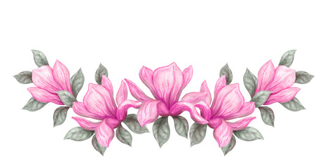 Hand drawn painting watercolor pencils and paints pink magnolia flowers isolated on white background
