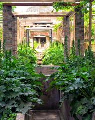 Pompeii Garden View