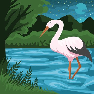 Stork and river vector illustration