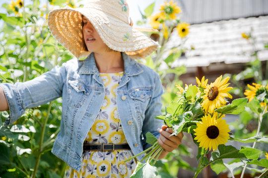 Young stylish woman picks sunflowers