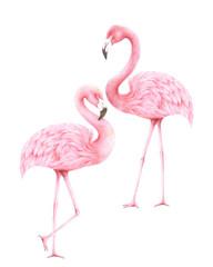 flamingo background,living coral tone 2019,illustraion,color pencils technique