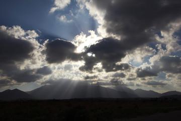 Yemen Island of Socotra