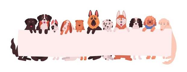 Group of adorable dogs of different breeds holding empty banner with place for text. Amusing domestic animals or pets with placard isolated on white background. Flat cartoon vector illustration.