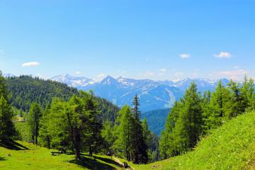 Trekking route in National park Dachstein, Austria. Away alpine mountains and green forest