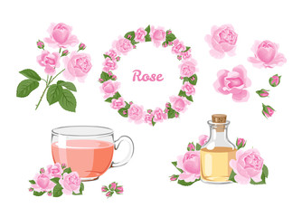 Rose set. Branch, wreath, tea and essential oil isolated on white background. Vector illustration of pink flowers in cartoon flat style.