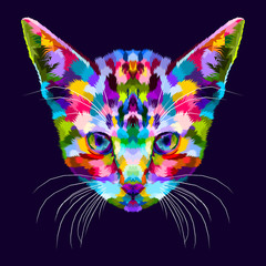 colorful kitten on abstract pop art