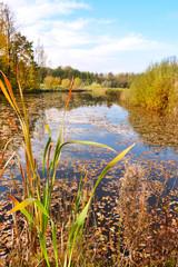 piękna kolorowa jesień, jezioro