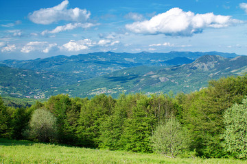 landscape of italian apennines in the north of Italy in summer