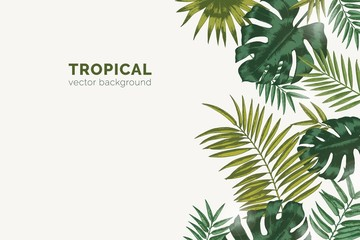 Summer paradise background with exotic palm tree branches and tropical Monstera leaves. Natural horizontal backdrop with foliage of rainforest jungle plants. Realistic botanical vector illustration.