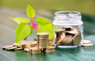Business success, gold money coins stack and jar with leaves