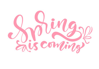 Pink Color Calligraphy lettering phrase Spring Is Coming. Vector Hand Drawn Isolated text. sketch doodle design for greeting card, scrapbook, print