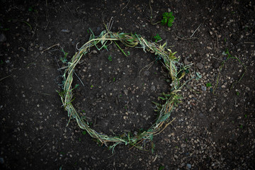 Vegetal ring with a copyspace
