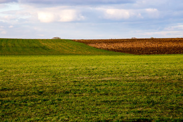 Landscape with plowed field and blue sky.