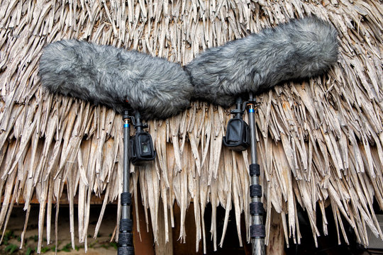 Two professional microphone on the rod for the film against the roof of a tropical Bungalow