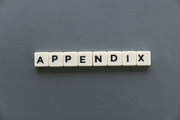 Appendix word made of square letter word on grey background.