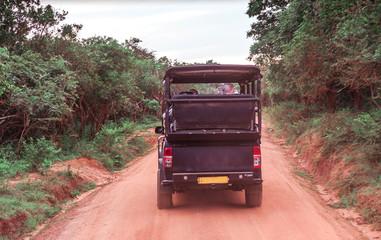 Black Jeep Safari.  Horizontal photo