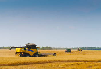 Two Combine Harvesters Cutting Wheat