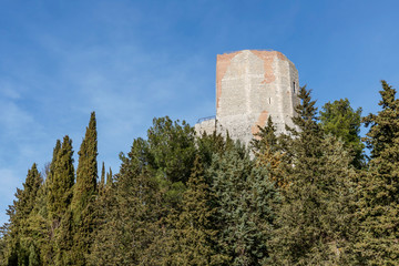The beautiful Rocca d'Orcia among the ancient trees, Siena, Tuscany, Italy