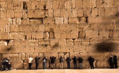 Pilgrims visiting the Wailing Wall in Jerusalem, Israel, Middle East Wall mural