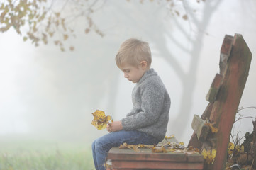 A four years old sad boy sitting on park bench in autumn, foggy day and holding  a few leaves in hands. Side profile