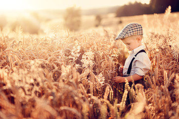 A child among mature cereals. A large field of grain. Harvest time. Beautiful valley in the rays of the summer sun.
