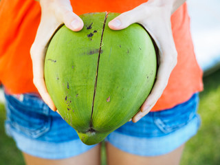 Crop, the girl is holding a green coconut with a crack fallen from a palm tree.