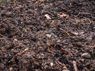 Healthy soil for gardening background