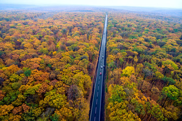 beautiful asphalt road through the autumn forest. Car Country Traffic