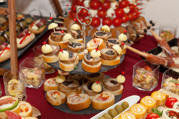 Catering food, colorful canapes