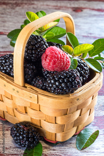 chaussures de sport 9728a 3f63b blackberry basket and one raspberry