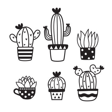 Set of cute succulent or cactus doodles. Hand drawn sketch succulent vector illustration.