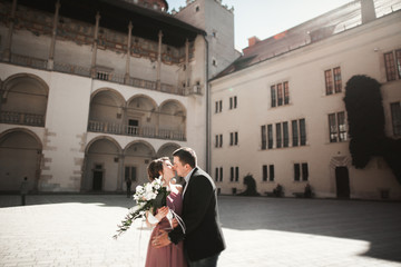 Beautiful couple, man, girl with long pink dress posing in old castle near columns. Krakow Vavel