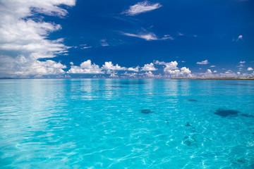 青く透明な南国の海