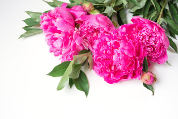 Bouquet of romantic pink peony flowers on white. Copy space.