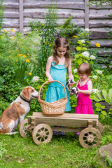 Two sisters  with Estonian hound dog and her puppies stand in the garden. Summertime in countryside.