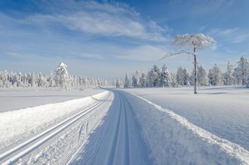 Skitracks in winter wonderland, Norway