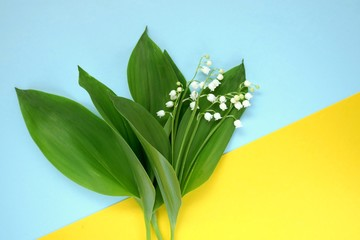 lily of the valley.Flower card. Lily of the valley flowers on yellow blue background. Mothers Day. International Women's Day. copy space.top view