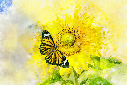 Art watercolor painting of Plain Tiger butterfly