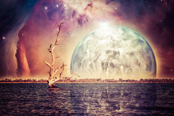 Alien landscape - bare tree trunk in sea with rising planet reflecting in the water. Elements of this image are furnished by NASA
