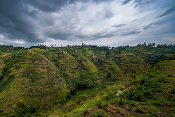 Beautiful landscape in southwestern Uganda, at the Bwindi Impenetrable Forest National Park, at the borders of Uganda, Congo and Rwanda. The Bwindi National Park is the home of the mountain gorillas